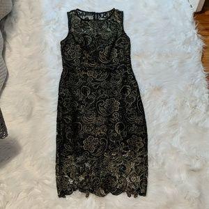 Bisou bisou gold and black lace dress
